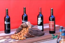 vinos de Toconao