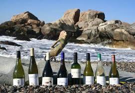 vinos valle deLeyda,Chile